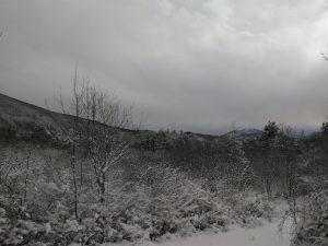 brgudac snijeg (12)