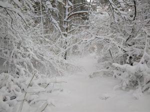 brgudac snijeg (14)