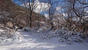 brgudac snijeg (2)
