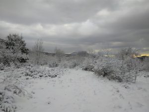 brgudac snijeg (36)
