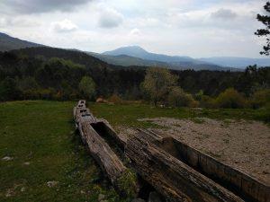 korita_cicarija (12)